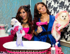 Snooki & JWOWW : photos